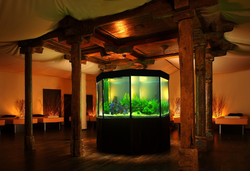 Großzügiger Ruheraum mit Aquarium unter den Rosenterrassen in der CLAUDIUS THERME / © Claudius Therme Köln