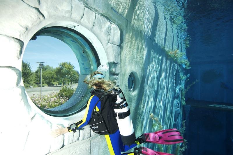 monte mare Rheinbach: Unterwasserwelt mit Blick auf die Außenwelt / © Phil Simha sunfishproductions