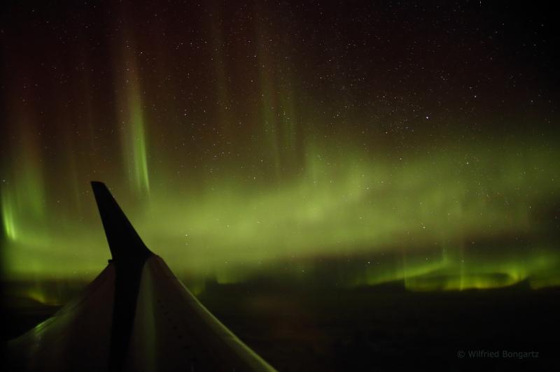 Die Teilnehmer des Polarlichtevents staunen immer wieder über die himmlischen Ereignisse / © Wilfried Bongartz