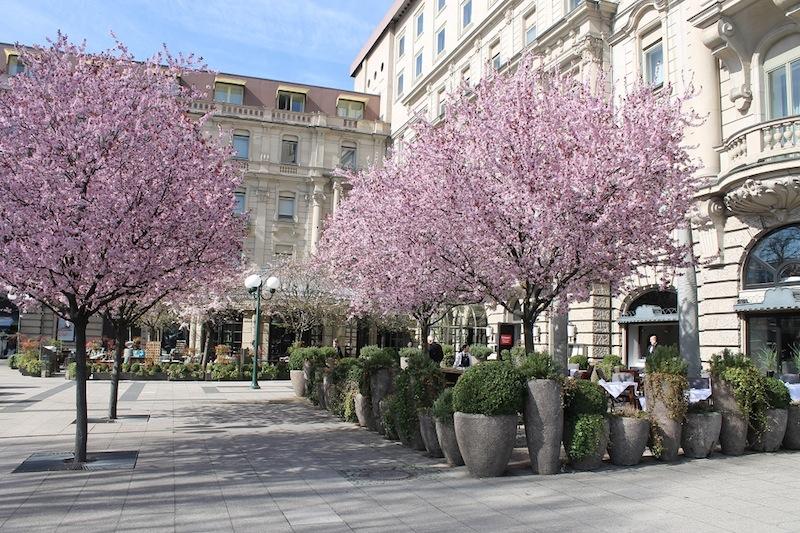 Hinter der schönen Barockfassade im Nassauer Hof befindet sich das Sterne Restaurant ENTE / © Nassauer Hof