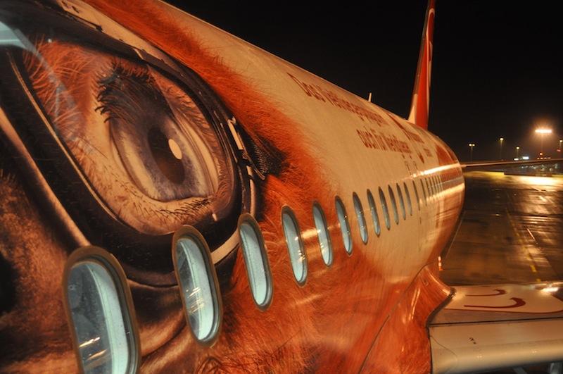 Unser MILO: Ein A320-200 von airberlin wurde für sechs Stunden unser Polarlicht-Jagdflugzeug / © Redaktion FrontRowSociety.net