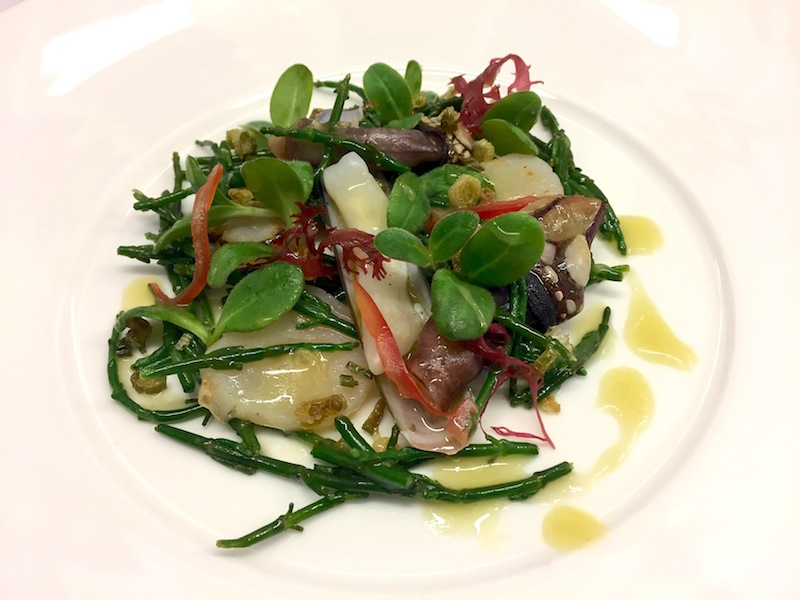 Warmer Salat mit Atlantik-Jakobs-, Schwert- und Entenmuscheln mit Passe Pierre / © Redaktion FrontRowSociety.net