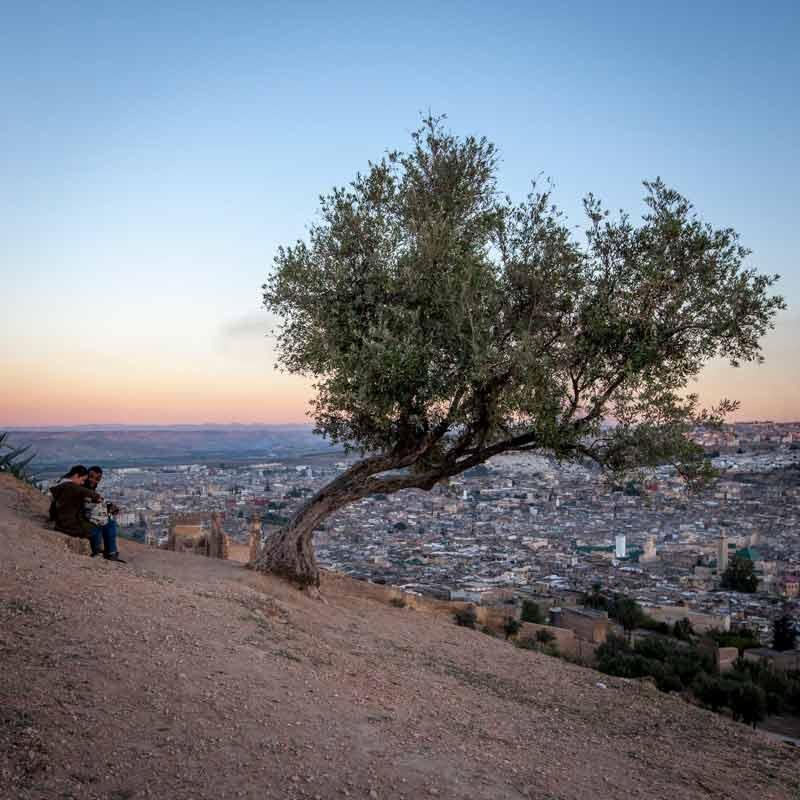 Ein Hügel im Norden, auf dem als historische Sehenswürdigkeit die Merinidengräber liegen, bietet den besten Überblick / © FrontRowSociety.net, Foto Georg Berg