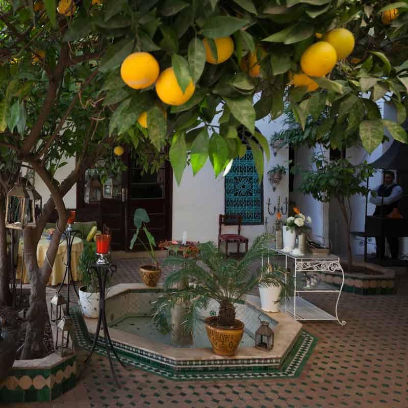 Eine Rezeption gibt es im Riad Arabesque nicht, aber der Innenhof ist eine Oase der Ruhe. Die Anmeldeformalitäten lassen sich bei einem marokkanischen Minztee erledigen / © FrontRowSociety.net, Foto Georg Berg