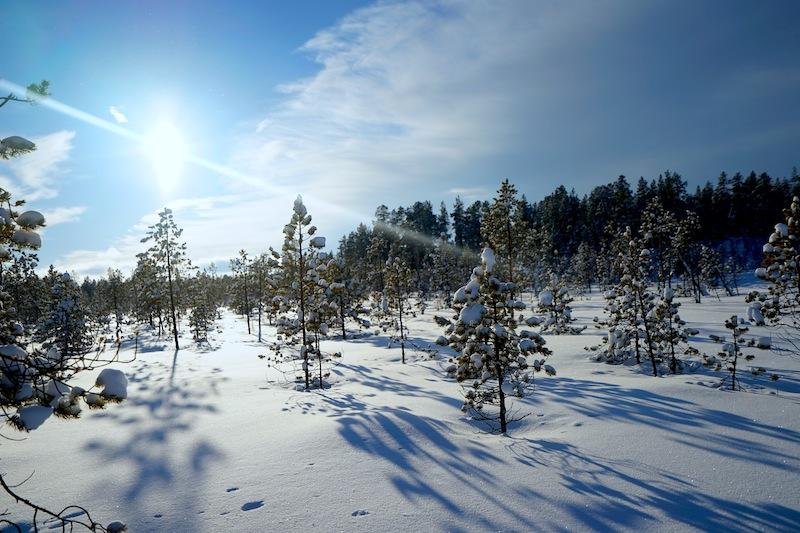 Bezaubernde Natur, himmlische Ruhe. in Finnisch Lappland kann man auch Urlaub machen. Neben Snowmobiltouren stehen auch Langlauf, Eisfischen und andere winterliche Sportarten auf dem Programm der Urlauber / © Redaktion FrontRowSociety.net