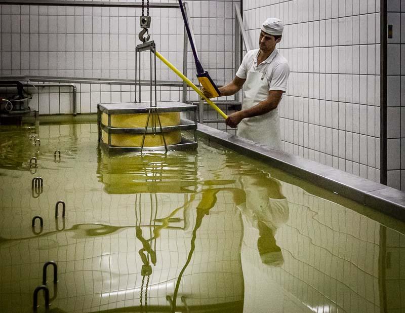 Versenkt im Salzbad. Meister Käser Greiner weiß genau, wo die 45 Käselaibe liegen und welche als nächstes wieder gehoben werden müssen