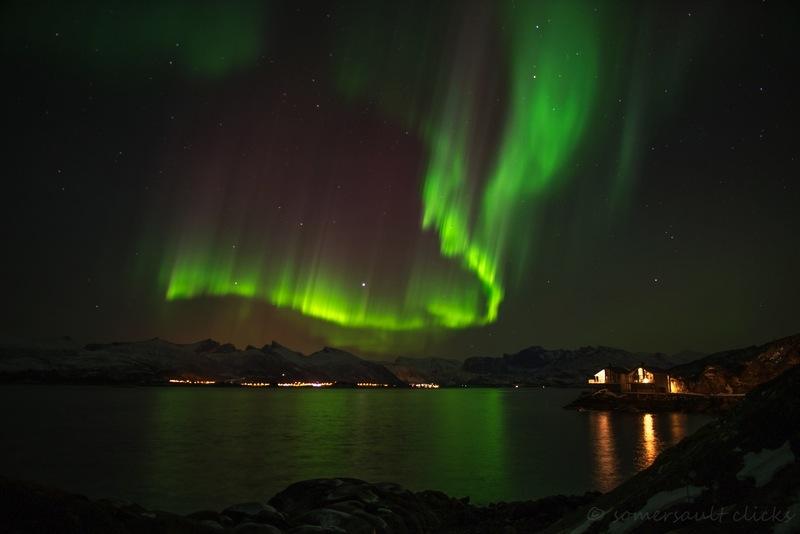 Schöne grüne Polarlichter über Senja - aufgenommen von Steffi von Somersault Clicks.