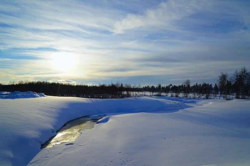 Gegenlichtaufnahmen tauchen die finnische Naturlandschaft in eine ganz besondere Farbe / © Redaktion Lustfaktor