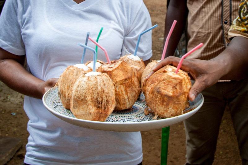 In Sierra Leone beliebt ist Kokoswasser als Getränk. Mal mit Strohalm und – etwas komplizierter zu trinken – häufiger ohne: Frisch mit der Machete aufgeschlagene Kokosnüsse / © FrontRowSociety.net, Foto Georg Berg