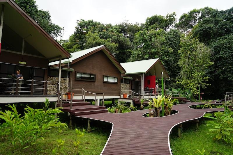 Komfortable Holzhäuser im Nationalpark - die Übernachtung ist ein besonderes Erlebnis, inmitten des uralten Urwaldes