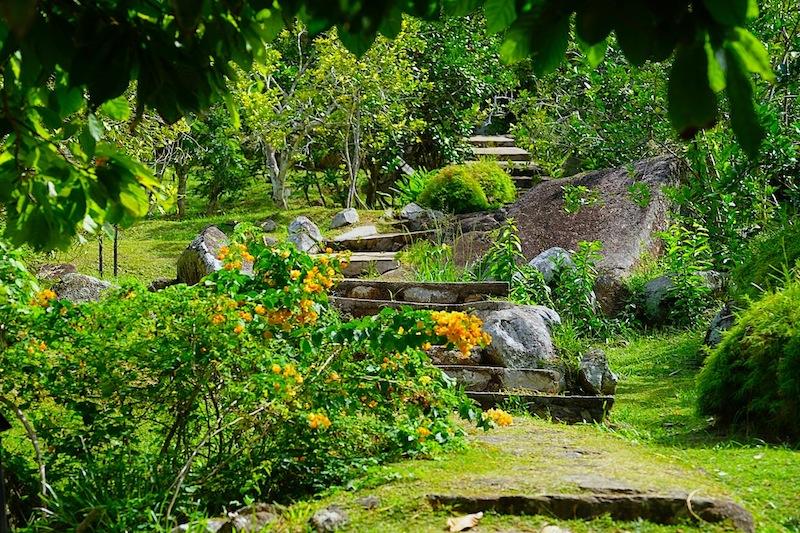 Le Jardin du Roi | Pflanzen- und Gewürzgarten | Mahe ...