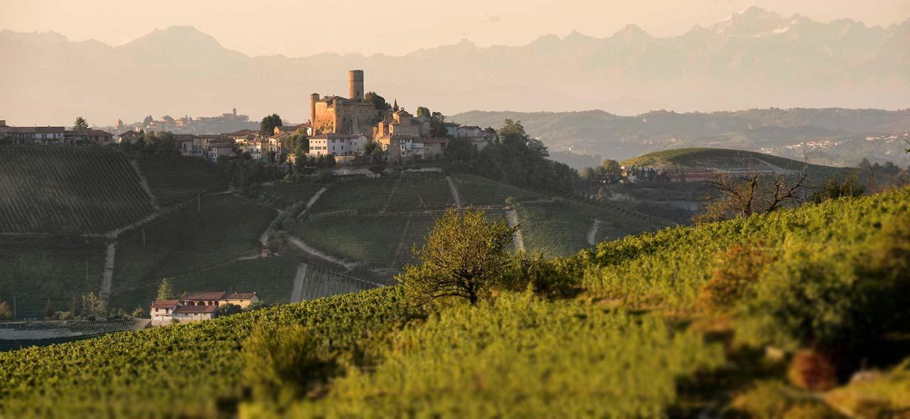 Hier wachsen die Trauben für die besten Weine Italiens