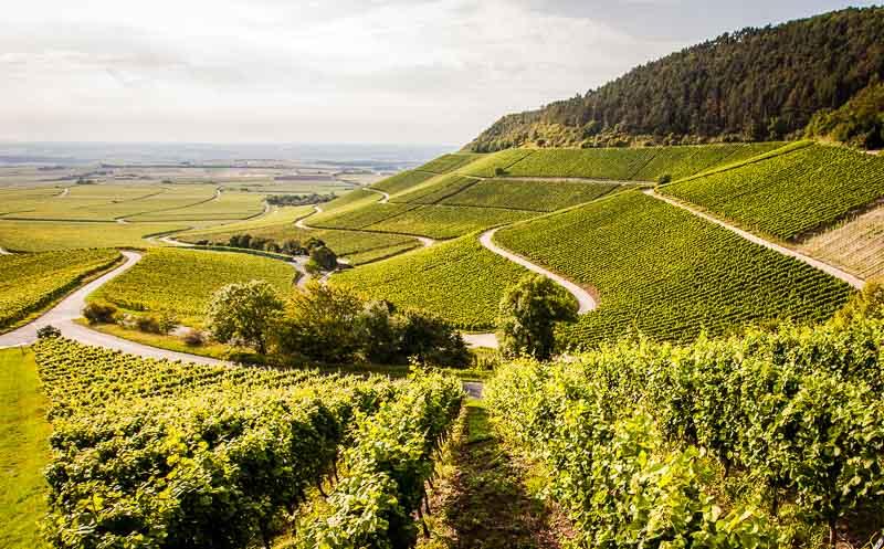 Der Weinbau im Steilhang ist aufwändig. Blick auf den Iphofener Julius-Echter-Berg / © FrontRowSociety.net, Foto: Georg Berg