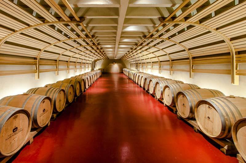 Der moderne Part des Weinkellers. Hier lagert nur ein kleiner Teil der Weine. Silvaner als typischer Franke ist mit 38% Anteil die dominierende Rebsorte, gefolgt vom Riesling, Müller-Thurgau, Scheurebe, Weißburgunder, Grauburgunder, Bacchus, Kerner, Traminer und den Rotweinsorten Spätburgunder, Portugieser und Dornfelder / © FrontRowSociety.net, Foto: Georg Berg