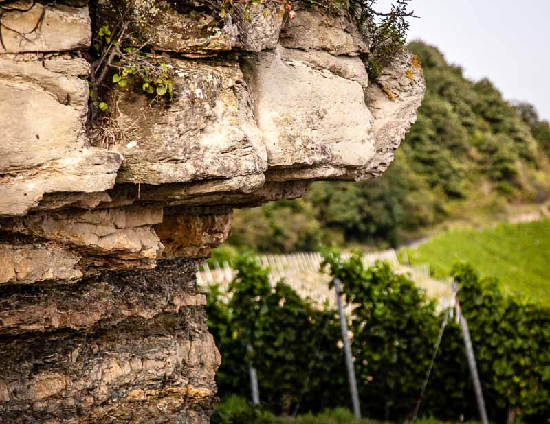 Gipskeuper prägt das Terroir der Grossen Lagen, von denen der Julius-Echter-Berg die berühmteste Lage in Iphofen ist / © FrontRowSociety.net, Foto: Georg Berg
