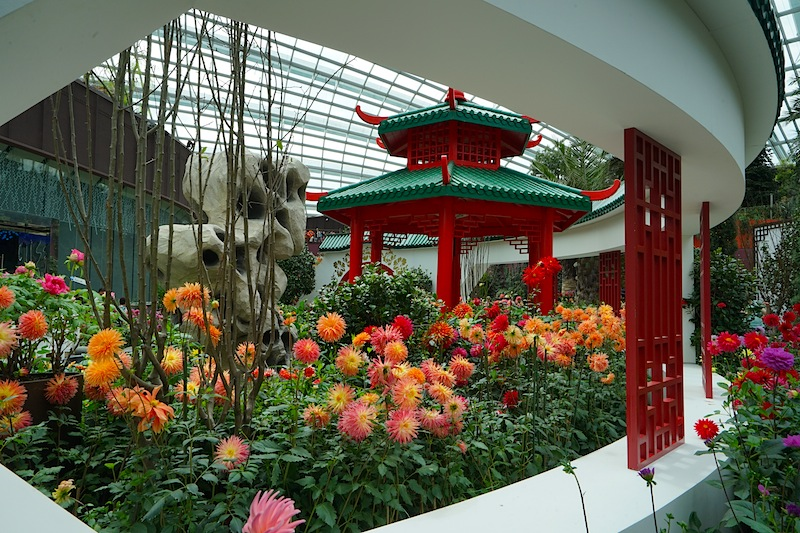 Prächtige Blumenbeete verzaubern die Besucher des Flower Domes