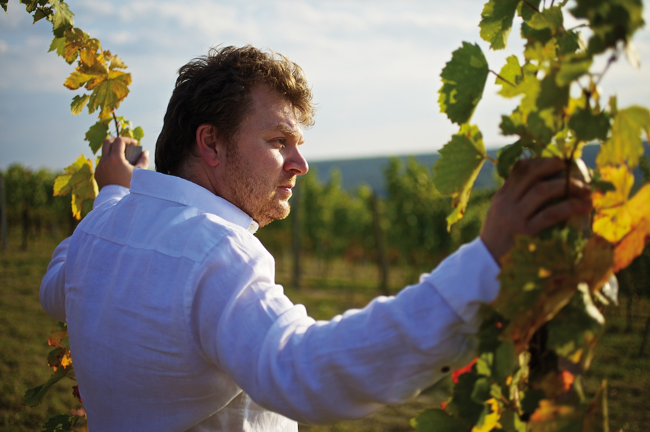 Albert Gesellmann hat von seinem Vater das Weingut übernommen und schafft mit der Neubelebung von autochthonen Rebsorten hervorragende Weine