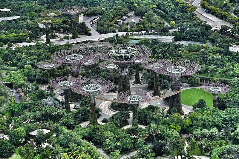 Inmitten des Gardens by the Bay stehen die weltweit bekannten Supertrees