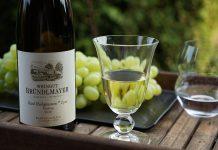 Der Bründlmayer Ried Heiligenstein Lyra 2016 Riesling hat das Zeug zum besten Riesling seines Jahrgangs zu werden
