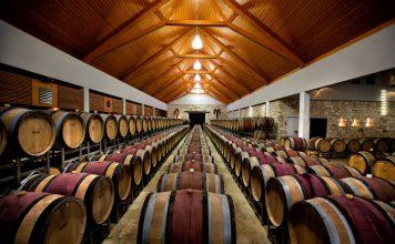 """In der Barriquehalle des Weinguts Umathum lagert unter anderem auch """"Königlicher Wein MMXV"""""""