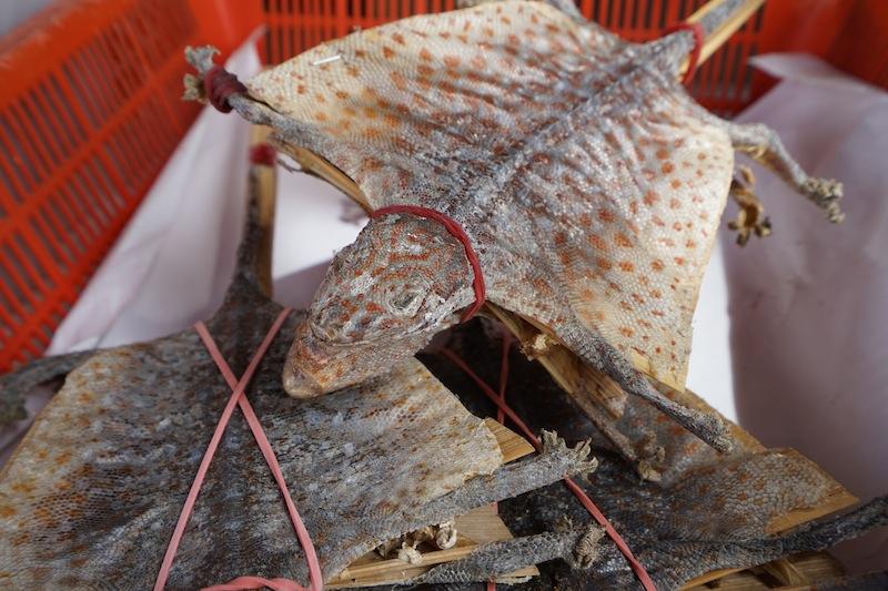 Einheimische beziehen in der South Bridge Road traditionelle chinesische Medizin, dazu zählen auch die luftgetrockneten Echsen