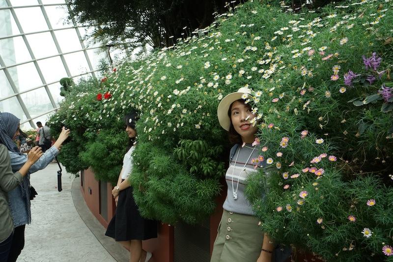 Innerhalb des Flower Domes gibt es viele Photopoints, welche von den Besuchern für einen Schnappschuss gerne genutzt werden