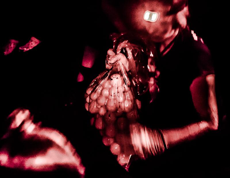 Geschafft. 82 Tischtennisball-große Eier sind im Sack. Sie wiegen 8 kg und müssen nur noch vorsichtig zur Hatchery getragen werden / © FrontRowSociety.net, Foto: Georg Berg
