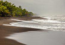 Der Karibik-Strand von Pacuare in Costa Rica / © FrontRowSociety.net, Foto: Georg Berg