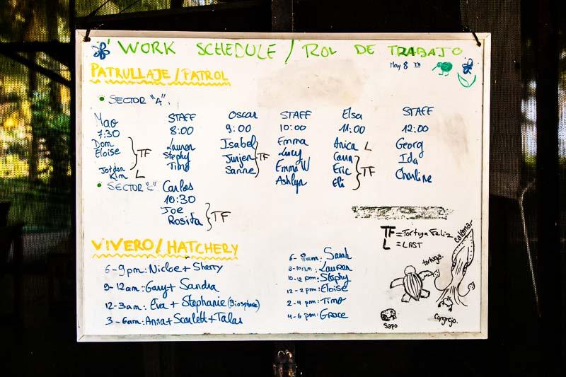 Der Arbeitsplan für den zweiten Tag. Es gibt die anstrengenden Dienste am Strand, bei denen man Schildkröten sehen kann oder die Bewachung der Hatchery. Zu diesem Dienst gehört auch, mit blossen Händen ein Loch für am Strand eingesammelte Gelege zu graben, das dem natürlichen Nest der Schildkröte so ähnlich wie möglich ist / © FrontRowSociety.net, Foto: Georg Berg