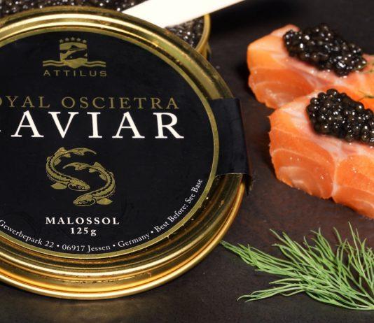 Attilus Royal Oscietra Caviar zählt zu den besten in Deutschland produzierten Kaviaren