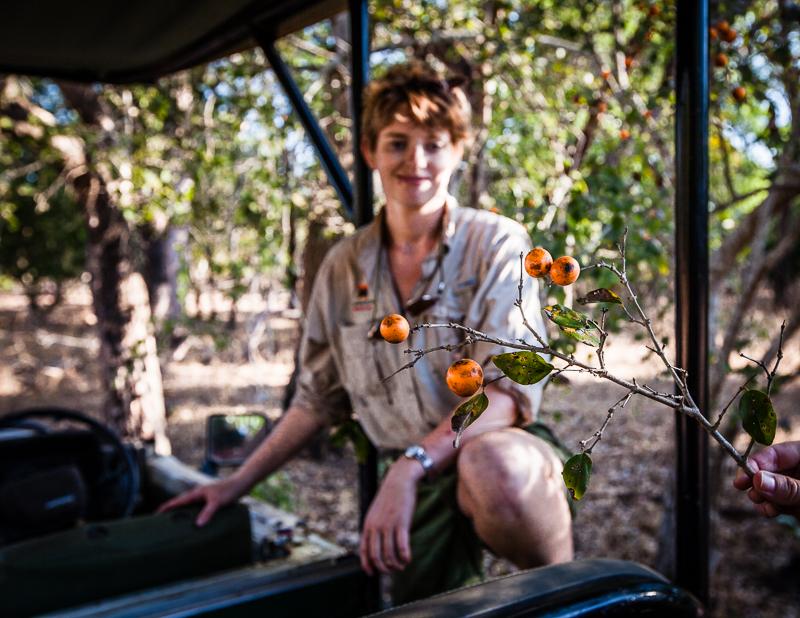 Bei der Buschsafari achtet Emma auf viele kleine Dinge. Hier zeigt sie kleine Früchte, aus denen Strychnin, ein Gift und Dopingmittel, gewonnen werden kann / © FrontRowSociety.net, Foto: Georg Berg