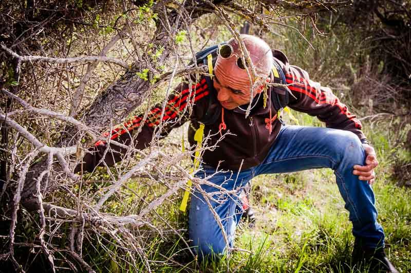 Gewusst wie: Nur mit geschultem Auge erkennt man die Anzeigerpflanze, die den entscheidenden Hinweis auf die frischen Spargeltriebe liefert / © FrontRowSociety.net, Foto: Georg Berg