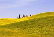 Landhaus in Toscana-Landschaft mit blühendem Rapsfeld / © FrontRowSociety.net, Foto: Georg Berg
