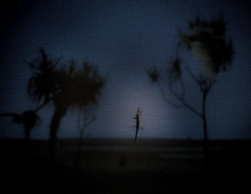 An der Wand erkennt man den Grund, warum in der Nacht keine Mücke lästig geworden ist: Zufrieden wandert ein Gecko über das von außen unsichtbare Fliegengitter, aus dem die Wand vollständig besteht / © FrontRowSociety.net, Foto: Georg Berg