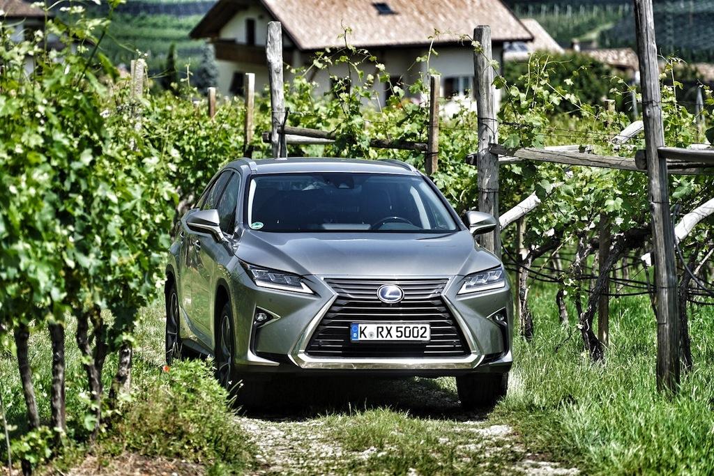 Mit dem Lexus RX 450h in den Weinbergen rund um Eppan