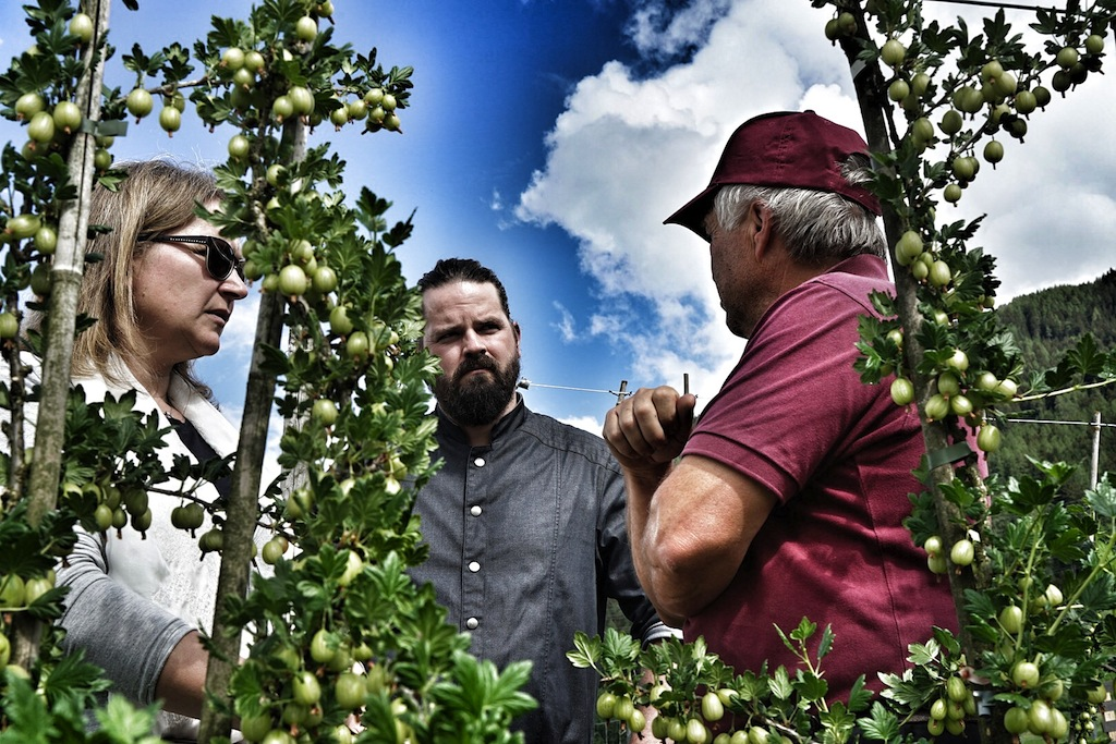 Haubenkoch Mario Döring (mi.) sucht für seine Kreation nur die besten Zutaten aus. Auch beim Obst macht er keine Kompromisse und vertraut auf das Know how von Martin Mair (re.)