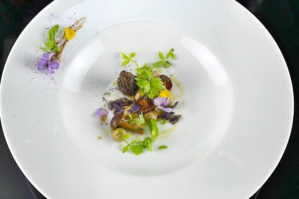 Filigran und sehr ansprechend auf den Teller gebracht - Amuse bouche erster Teil: Morcheln, Waldpilze, Maigipfel und Blüten