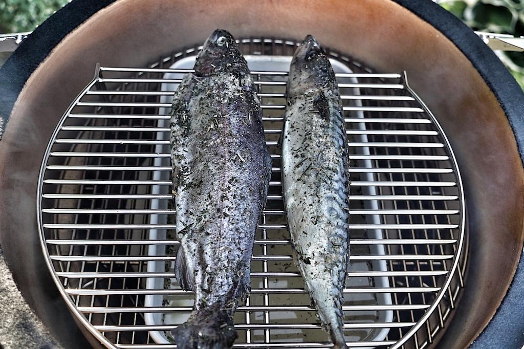 Unser Fisch wartet: Das Smoken kann beginnen