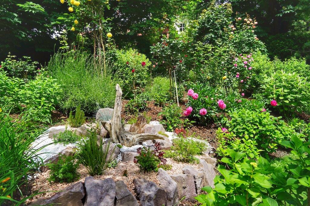 Kräuter und Blüten sind die Stoffe, aus welchen Renate Spa-Träume entstehen lässt