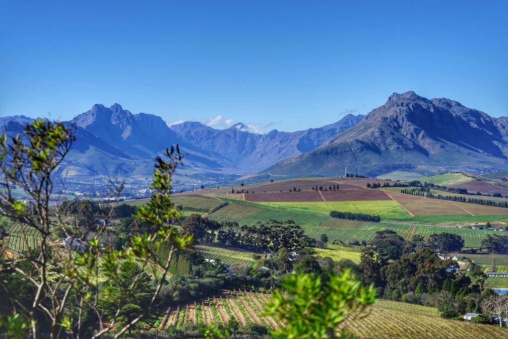 Atemberaubende Aussicht auf die Weinberge von Stellenbosch: Die Kapregion in Südafrika hat neben jeder Menge Weingüter, die sich auf den Besuch von Gästen freuen, auch touristisch Einiges zu bieten