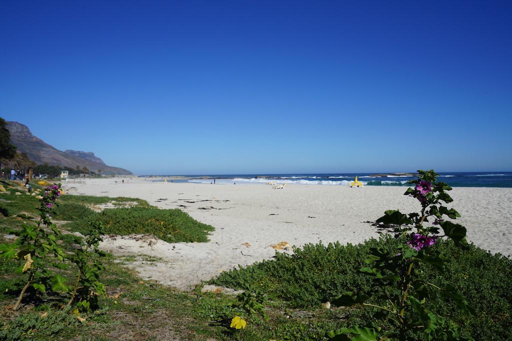 Die Camps Bay liegt nicht auf der Strecke des Rovos Rail, jedoch nur wenige Kilometer von Kapstadt entfernt. Es tut gut, die gesammelten Eindrücke beim weiten Blick über den Atlantischen Ozean sacken zu lassen und tief durchzuatmen