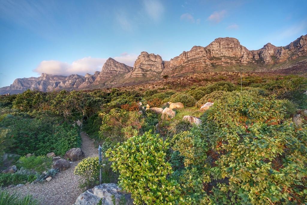 Die speziellen Zimmer zur Bergseite, welche im Erdgeschoss liegen, haben Zugangzu den Fynbos-Gärten