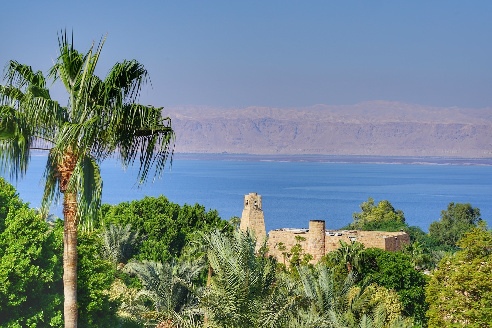 Die Luxusanlage ist eingebettet in ein Meer an grünen Palmen