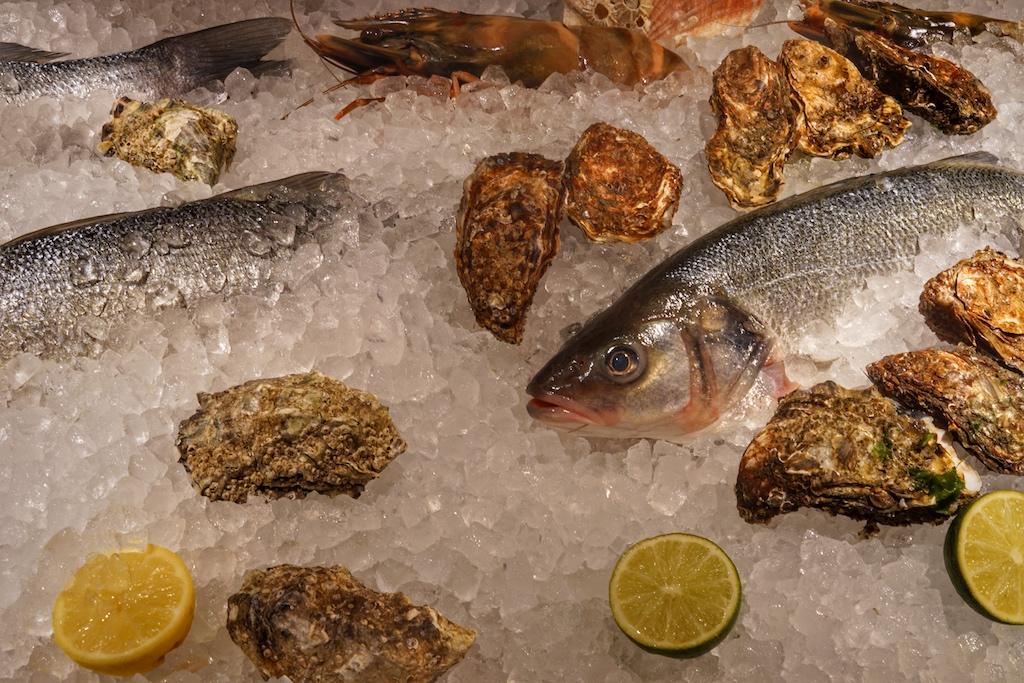 Welcher Meeresbewohner soll es nun sein? Ist der Richtige gefunden, beginnt der Zyklus des Dinners