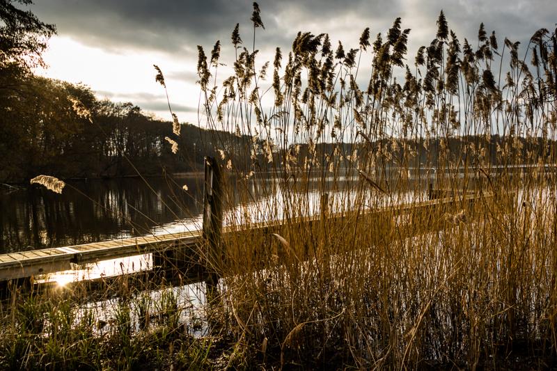 Einer von Tausend: der Finckener See ist der Haussee des Kavaliershaus Schloss Blücher. Mit dem Auto oder dem Fahrrad ist man auch schnell im Nationalpark Müritz mit seinen über 1.000 Seen / © FrontRowSociety.net, Foto: Georg Berg