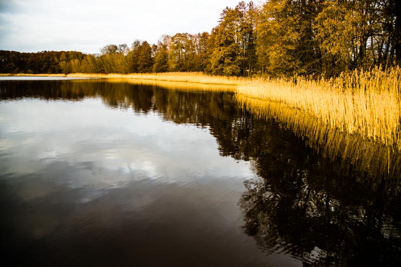Der Finckener See soll nach den Plänen von Dierck Engel bald nur noch von ökologisch behandelten Feldern umgeben sein / © FrontRowSociety.net, Foto: Georg Berg