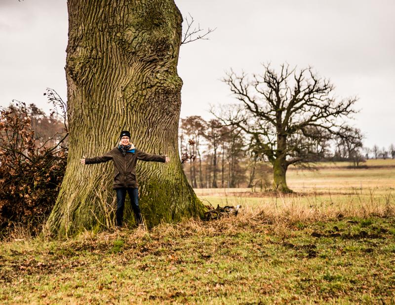 Auf Dierk Engels Feldern steht die wohl ältestes Eiche der Gegend mit einem Alter von rund 700 Jahren und einem Stammdurchmesser von 2,15 Meter / © FrontRowSociety.net, Foto: Georg Berg