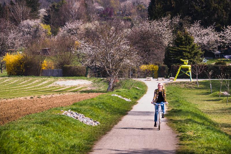 Weiter, immer weiter. 24 Wegmarken auf fünf Kilometer. Der Rehberger Weg führt zum großen Teil durch die Weinberge. Fahrräder gibt es zum Verleih direkt im Hotel Krone. Spazieren gehen ist natürlich auch eine Option / © FrontRowSociety.net, Foto: Georg Berg