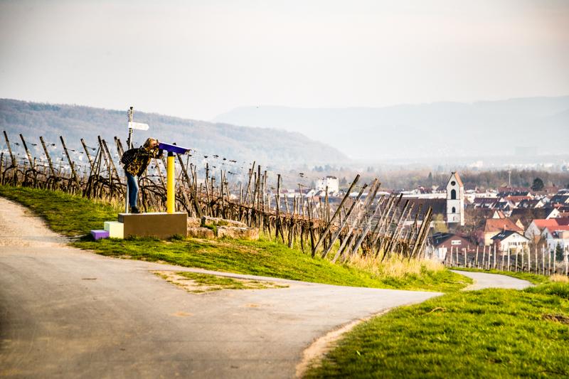 Tobias Rehberger und die Wegmarke Fernglas mit Blick aus dem Weinberg auf Weil am Rhein / © FrontRowSociety.net, Foto: Georg Berg