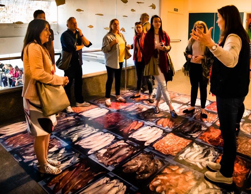 Touristen haben die Möglichkeit, im Rahmen einer Führung die Fischauktion zu besuchen. Museumsmitarbeiterin Maria Angels erklärt das Auktionsprocedere und gibt Auskunft zu Fischarten. Der Auktion kann man dann aber nur hinter Glas und von oben herab beiwohnen / © FrontRowSociety.net, Foto: Georg Berg